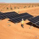 Domaines dattier 30 kWc
